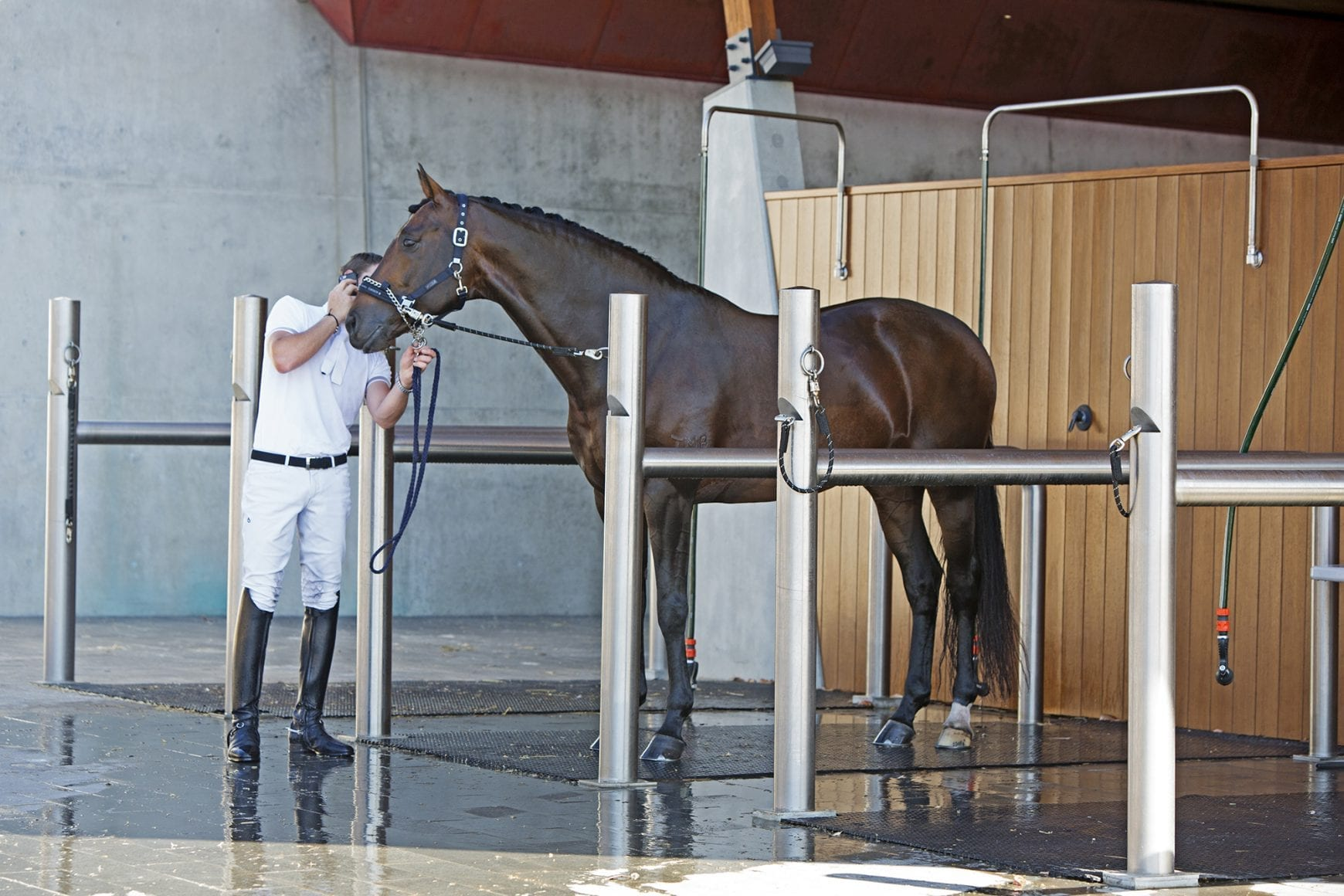 wash bays stables