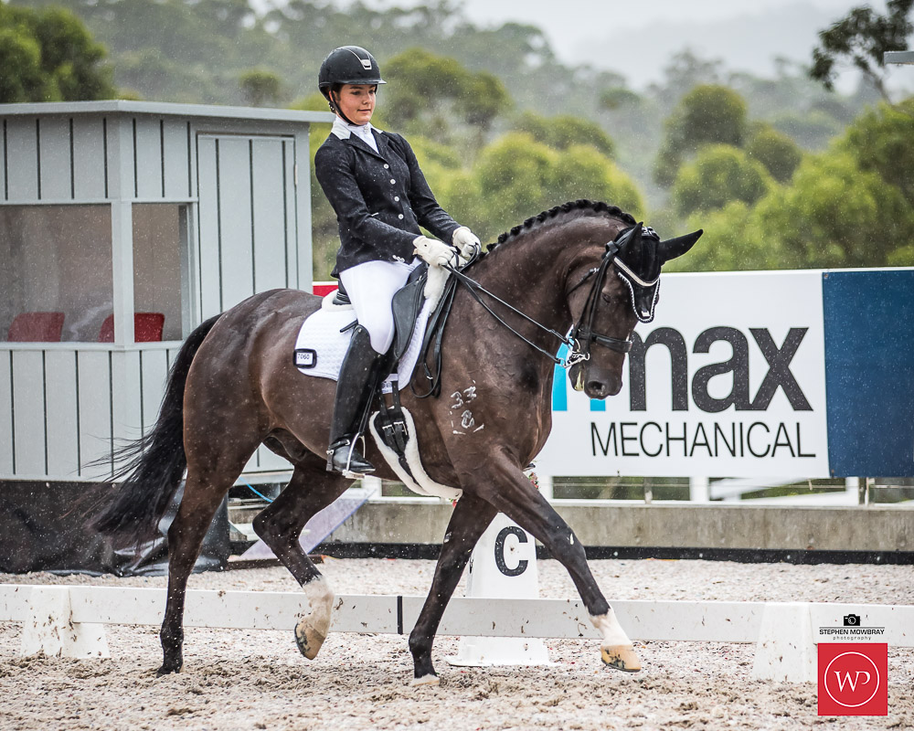Dressage By The Sea Sunday Results Amp Photo Gallery