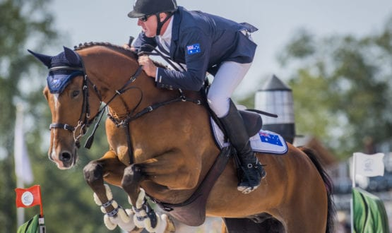 Showjumping at FEI World Equestrian Games™