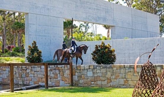 Dressage competitors on horses