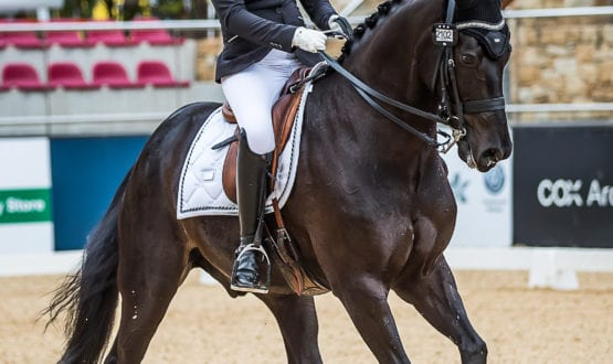 Rosie Cooke and'KH Arion'
