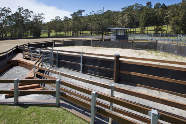 Update on the construction of Equestrian Centre campdraft and event areas