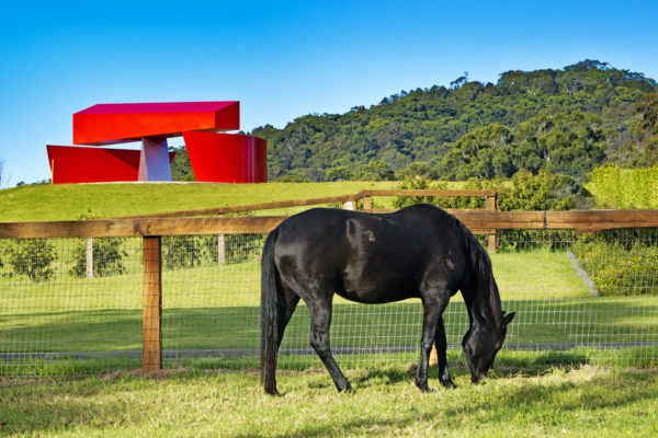 Horse in a paddock, with Red Balance Beam Sculpture in the background.