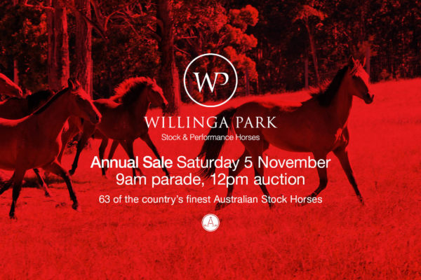 Flyer for Annual Horse Sale at Willinga Park