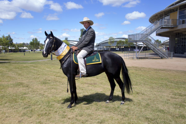 Willingapark Angels Destiny at the Royal Canberra Show
