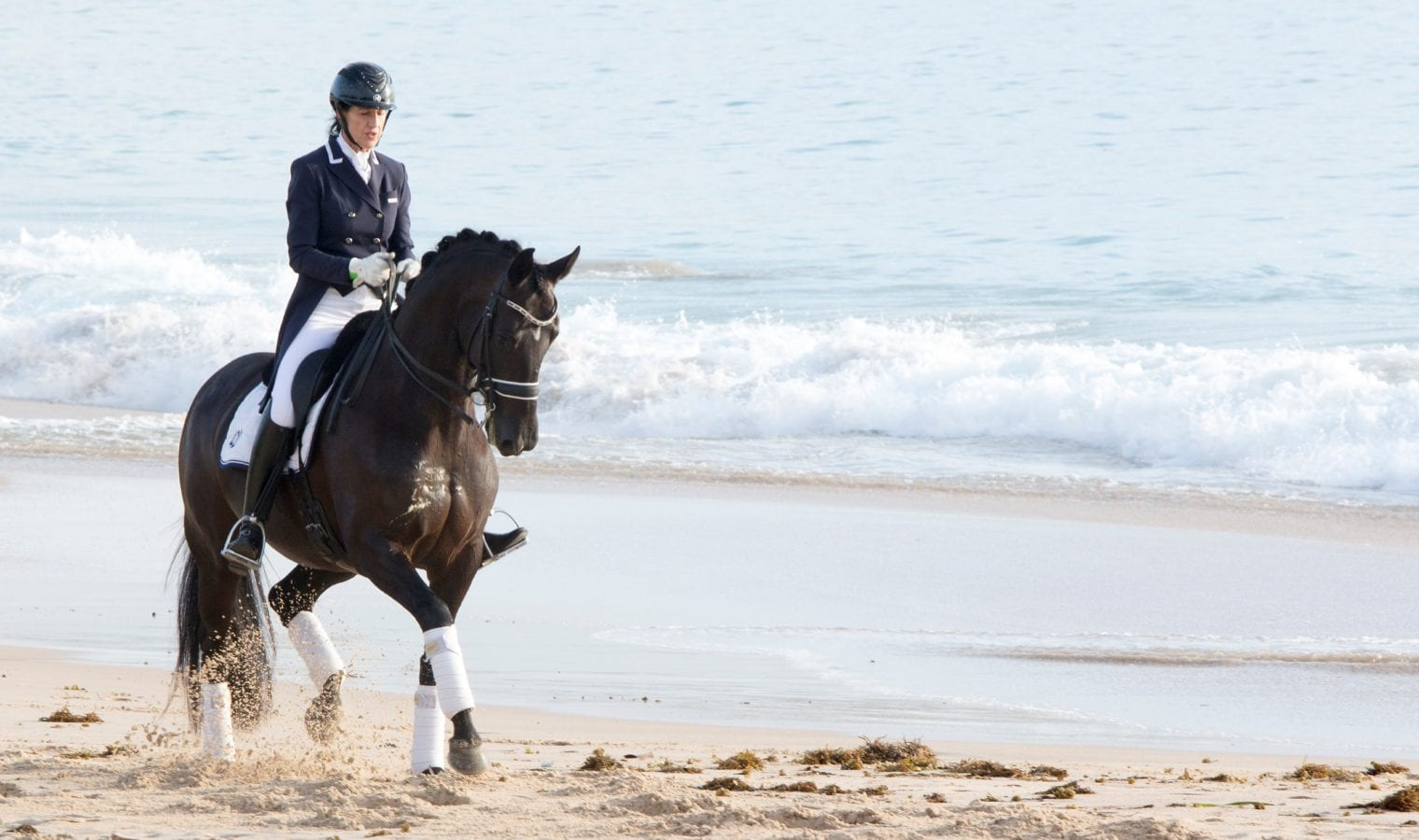Dressage by the Sea
