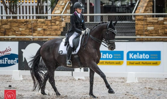 Sophie Artup and'Deltry Sorrento' win the class with a score of 67.92%