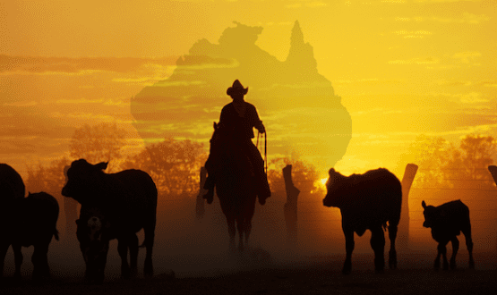 Outback Cowboys