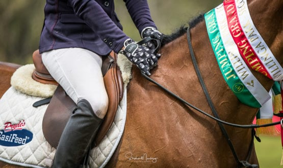 WPS86739-Vicki Roycroft's riding gloves !!