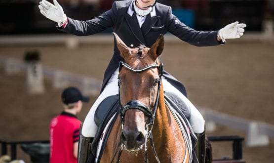 Mary Warren and'Mindarah Park Raphael' win the class with a score of 73.600 %