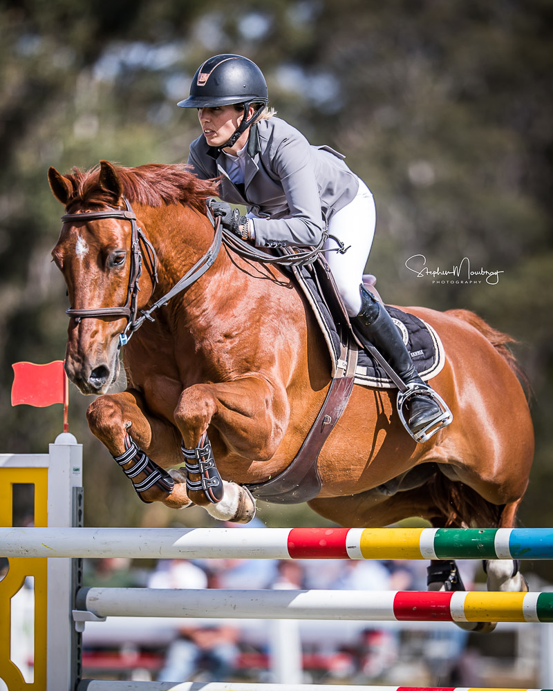 WJ924336-Katie Laurie and 'Cera Caruso' place seventh with 4 faults in the Willinga Park Grand Prix