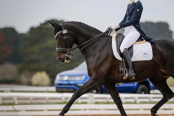Megan Bryant dressage rider with her horse