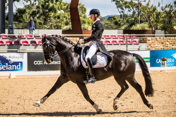 WP918114-Jayden Brown and 'DaVinci L' win the Canberra Airport Group Intermediate 1 CDN with a score of 73.039%